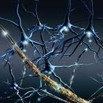 Sclerosi Multipla: una nuova ricerca mostra risultati incoraggianti