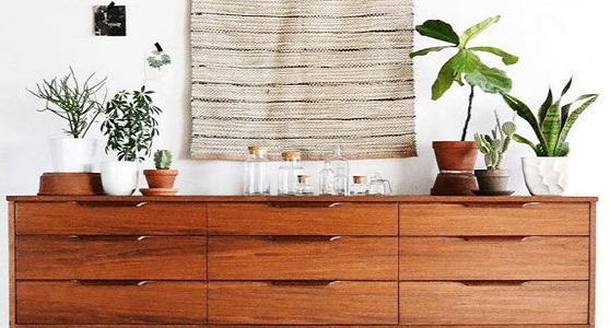 Arredare casa con le piante grasse idee da realizzare con for Arredare casa con le piante