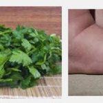 Per i piedi gonfi l'infuso al prezzemolo, la ricetta per rimediare