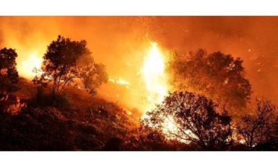 massima allerta in piemonte, continui incendi