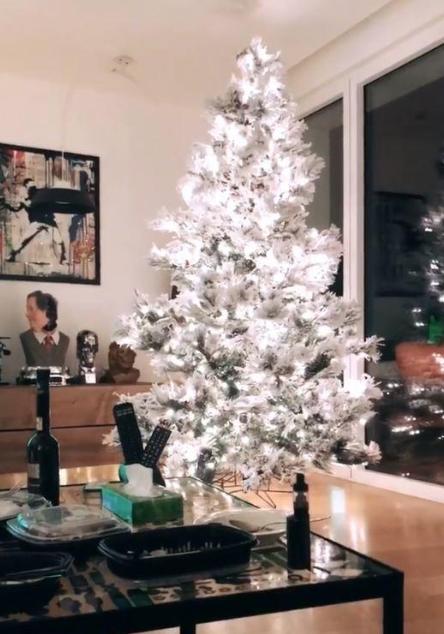 Chiara Ferragni e Fedez hanno già fatto l'albero di Natale, neve e luci in casa (Foto)