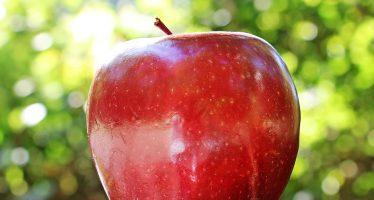 dieta della mela per perdere 4 kg in 2 settimane