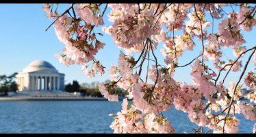 frasi per l'equinozio di primavera