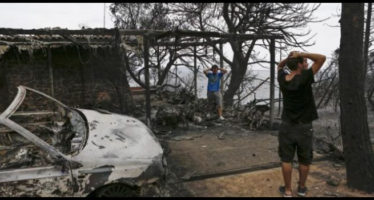 incendi grecia sopravvissuti