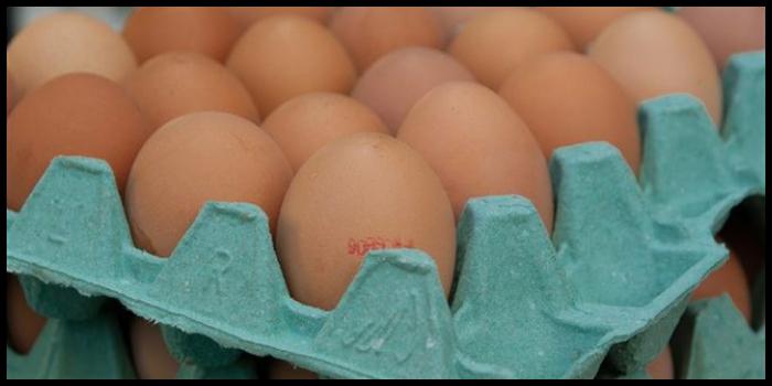 Allarme alimentare, ritirate uova fresche: rischio salmonella