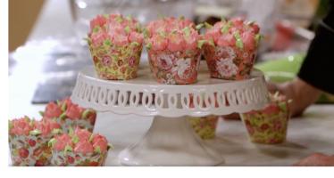 ardovino cupcake