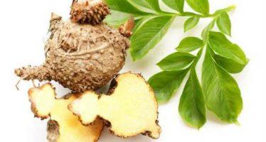 la dieta detox con il glucomannano