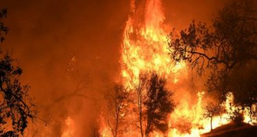 california devastata dagli incendi, ultime notizie