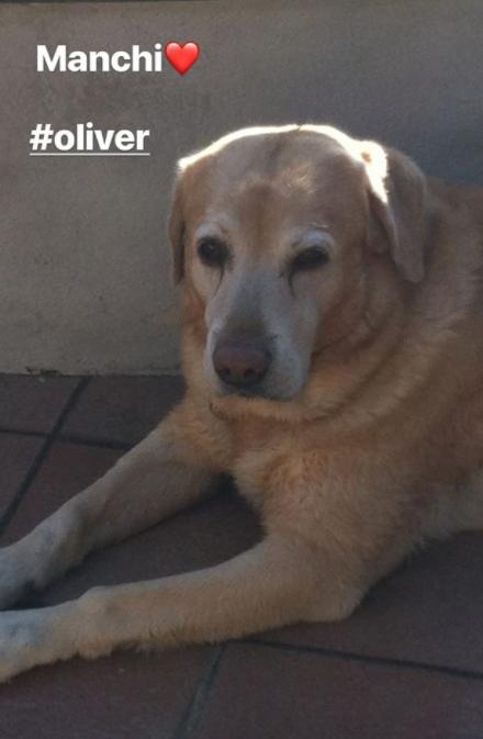Antonella Clerici ricorda Oliver con le foto più dolci, è passato un anno (Foto)