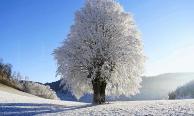 previsioni meteo freddo neve