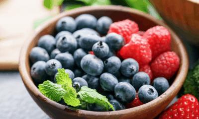 dieta monica setta