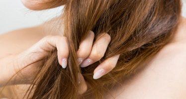riparare i capelli dopo l'estate