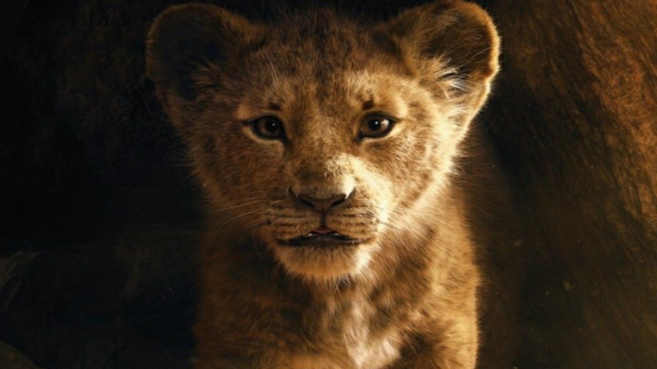 Le frasi più belle tratte dal Film Disney Il Re Leone