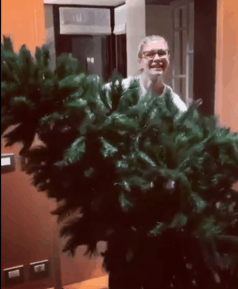 L'albero di Natale dei vip, da Elena Santarelli a Elisabetta Gregoraci il più bello non l'abbiamo ancora visto (Foto)