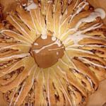 corona di natale la prova del cuoco
