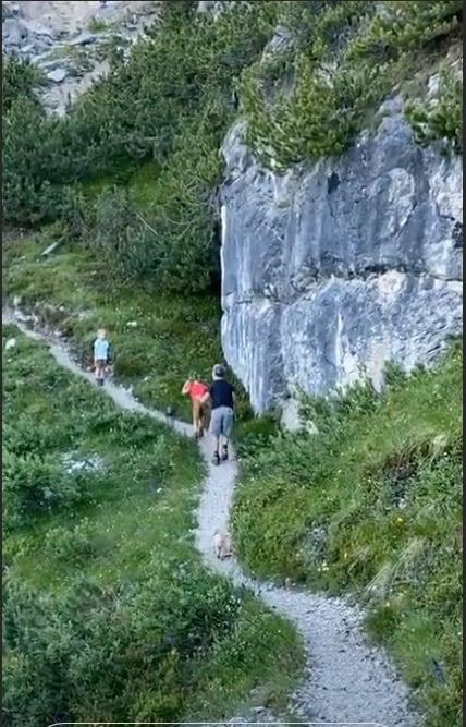 Michelle Hunziker in montagna con figlie, amici e cani è una gran fatica (Foto)