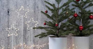ikea, vasi e piante natalizie