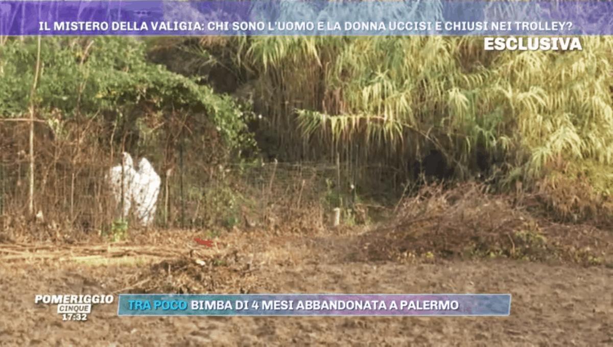Svolta nel giallo di Firenze: i cadaveri smembrati sono di una coppia scomparsa nel 2015