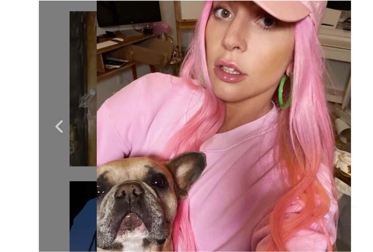 Shock per Lady Gaga lontana dagli Usa: sparano al dog sitter e rapiscono i suoi cani