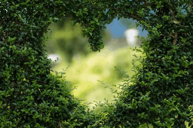 Bonus verde 2021: quali lavori comprende e come funziona
