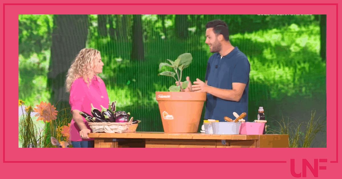 E' sempre mezzogiorno: Matt spiega come si coltivano le melanzane sul balcone