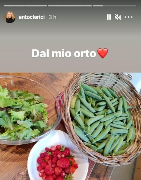 Dall'orto di Antonella Clerici: la conduttrice mostra il suo raccolto (Foto)