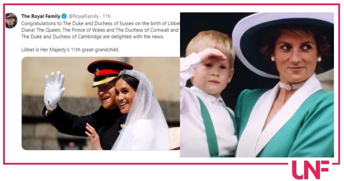 Harry e Meghan scelgono Lilibet Diana per la piccola: la risposta della Regina è distaccata