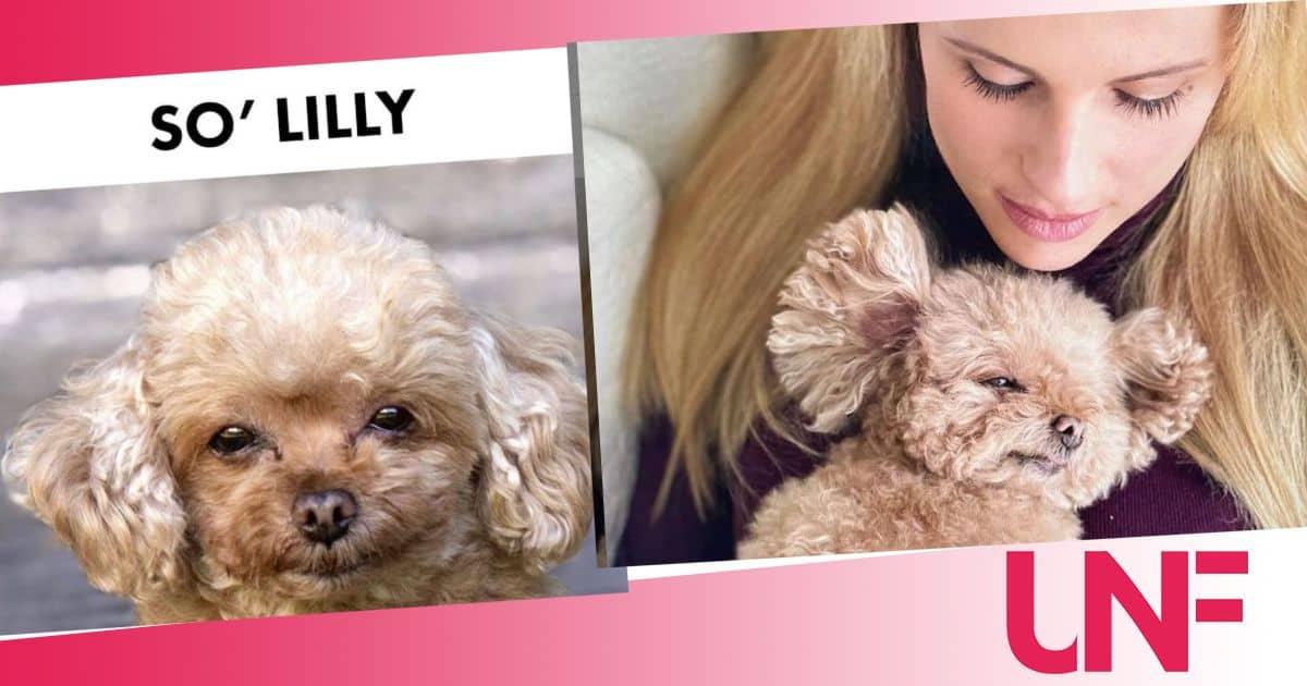 Michelle Hunziker dice addio alla sua Lilly: un vuoto che fa male