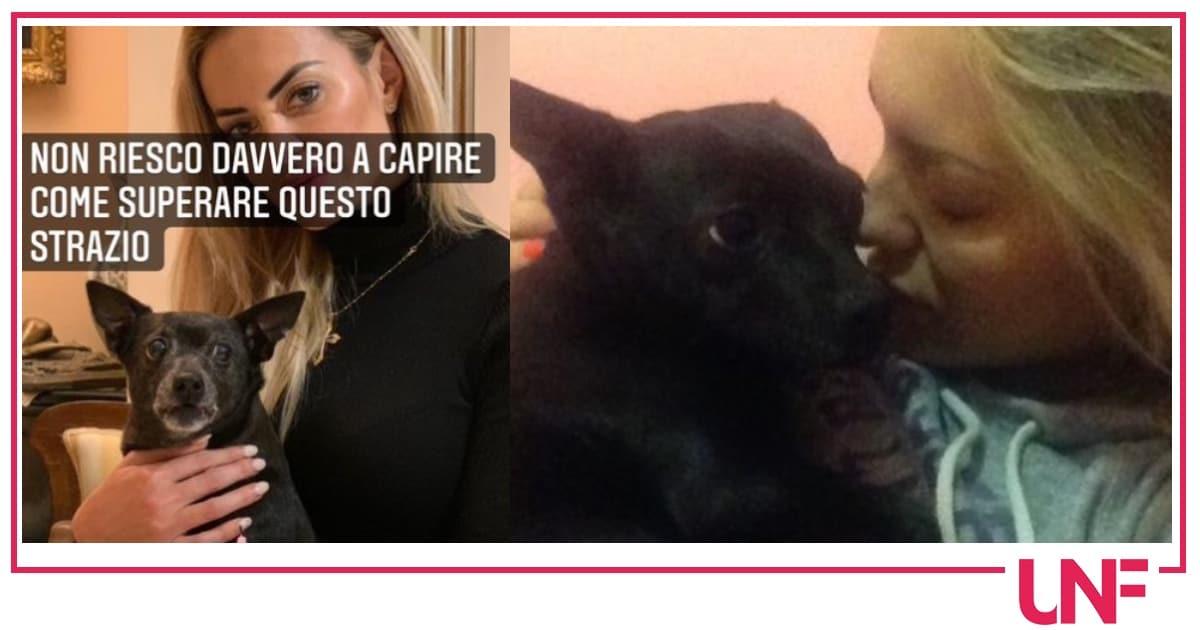 Elena Morali contro la veterinaria per la morte improvvisa della sua cagnolina