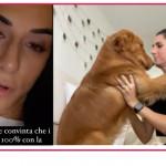 Valentina Vignali ha ritrovato il cane ma i ladri le hanno portato via tutto