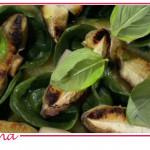 Cappellacci verdi ai funghi porcini, ricetta di Ivano Ricchebono