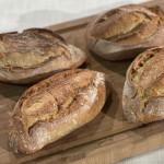 Ricette Fulvio Marino: ciriola romana, i panini di oggi